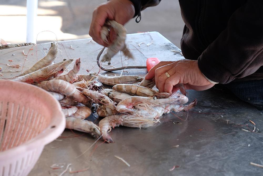 Shrimp. Credit: Meera Subrmanian