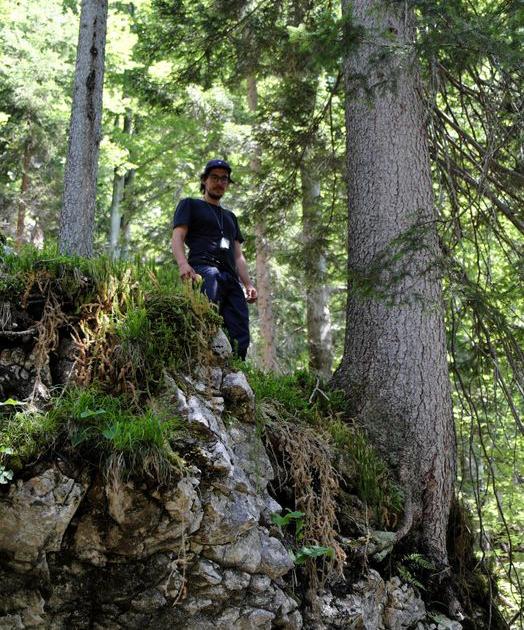 Landscape ecologist Cornelius Senf in an Austrian forest. Credit: Rupert Seidl