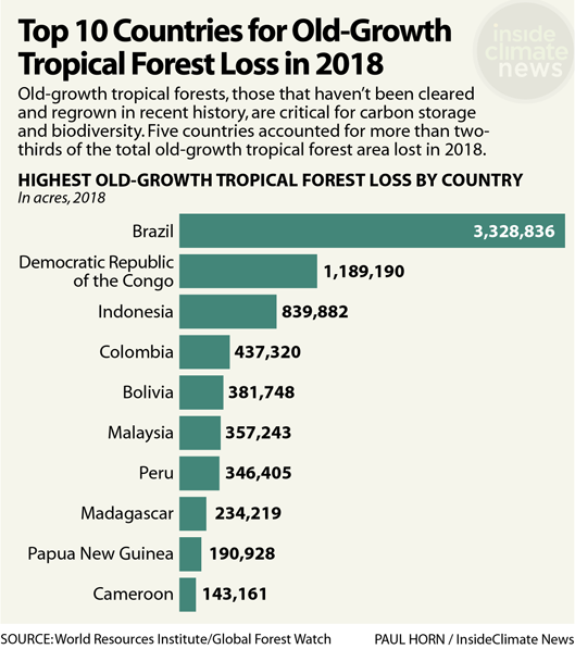 Chart: Top 10 Countries for Old-Growth Tropical Forest Loss in 2018