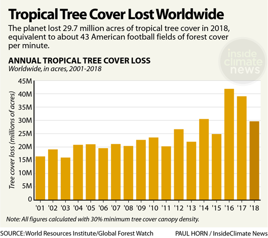 Chart: Tropical Tree Cover Lost Worldwide