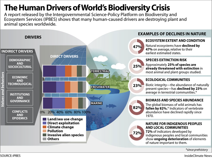 Climate change and other human-caused factors are driving a global biodiversity crisis