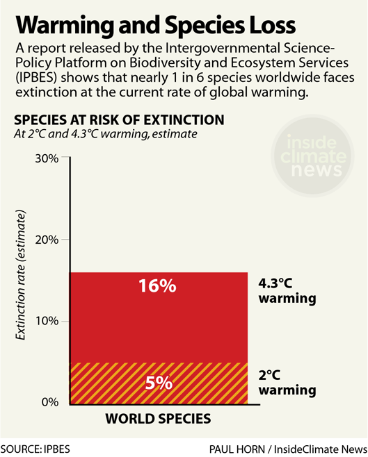 Global warming is putting species worldwide at grave risk