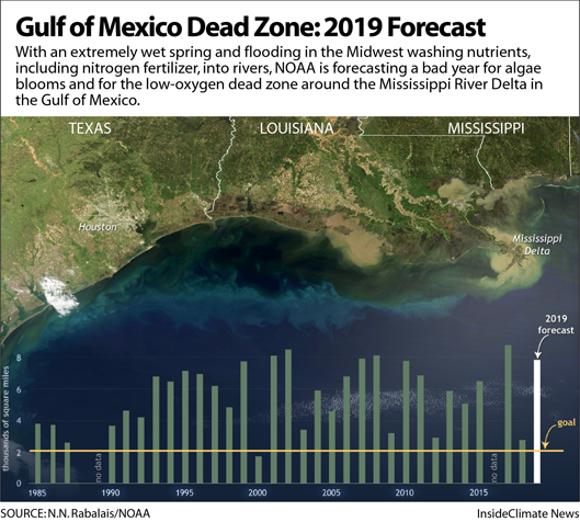 Chart: Gulf of Mexico Dead Zone: 2019 Forecast