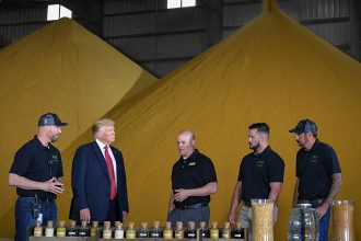 President Donald Trump looks at samples of corn used in biofuels at Southwest Iowa Renewable Energy in Council Bluffs, Iowa, on June 11, 2019. Credit: Mandel Ngan/AFP/Getty Images