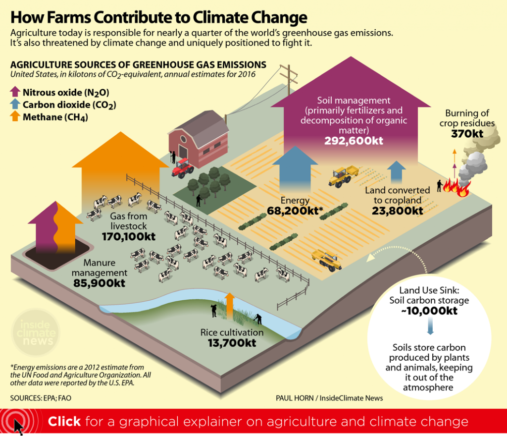 Click for an infographic explainer on agriculture and climate change