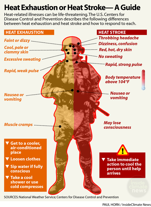 Infographic: Heat Exhaustion or Heat Stroke — a Guide