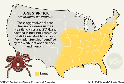 Infographic: Lonestar Tick: Its Range, Diseases and Biting Behavior