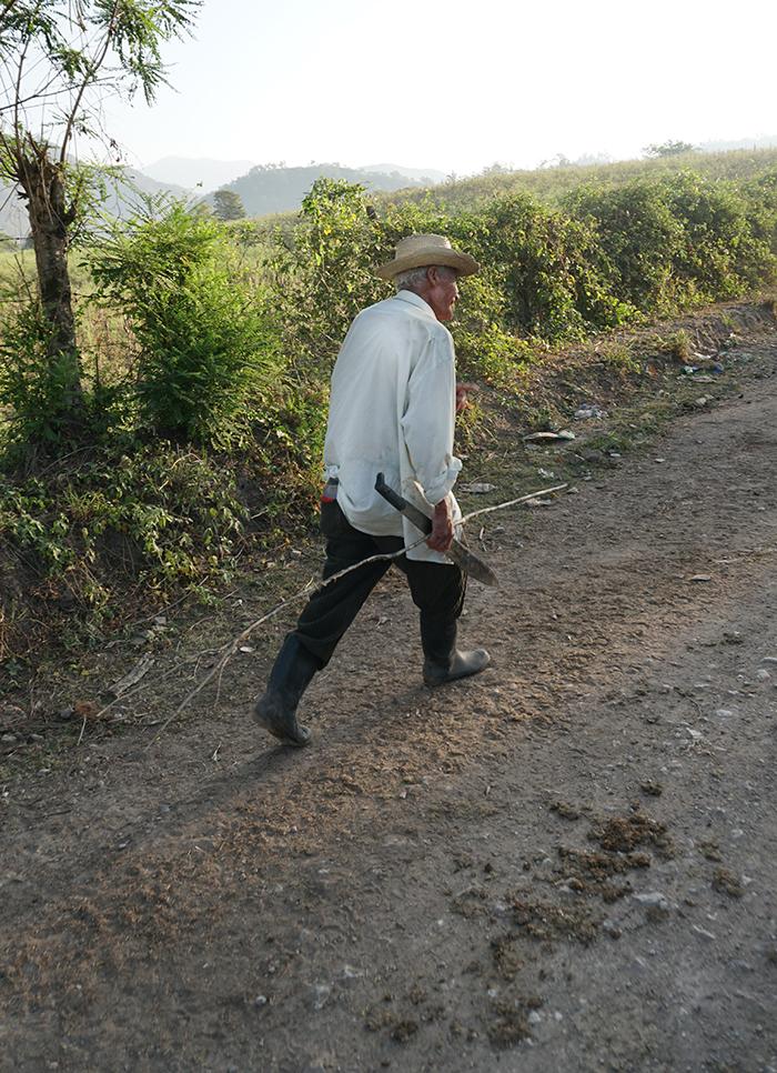 A farmer on a road near El Rosario. Credit: Georgina Gustin
