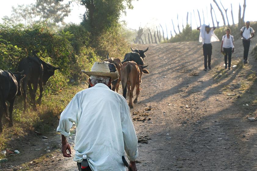 Near El Rosario, Honduras. Credit: Georgina Gustin/InsideClimate News