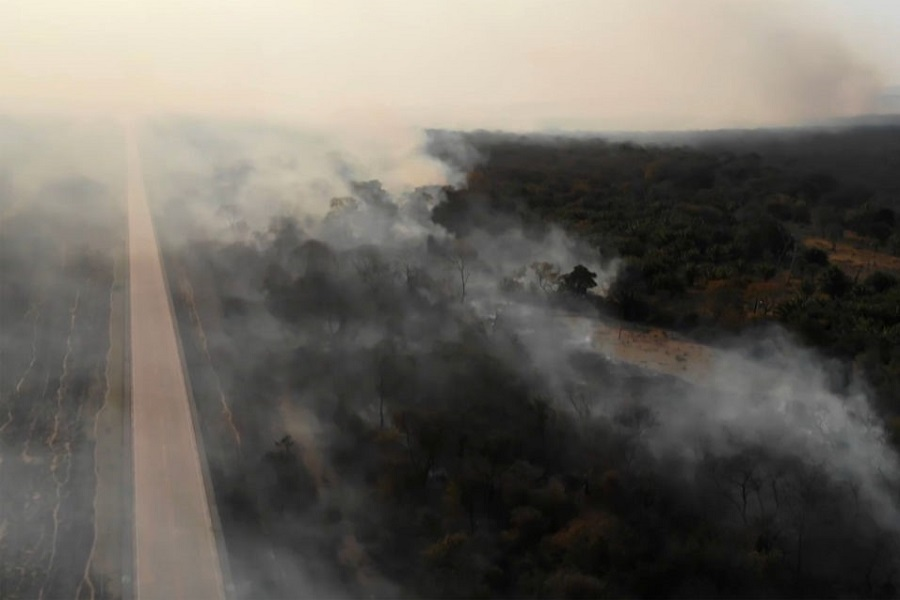 Farmers and ranchers use fire to clear forest for crops and grazing in the Amazon. This year, the numbers of fires is unusually high. Credit: Stringer/AFP/Getty Images