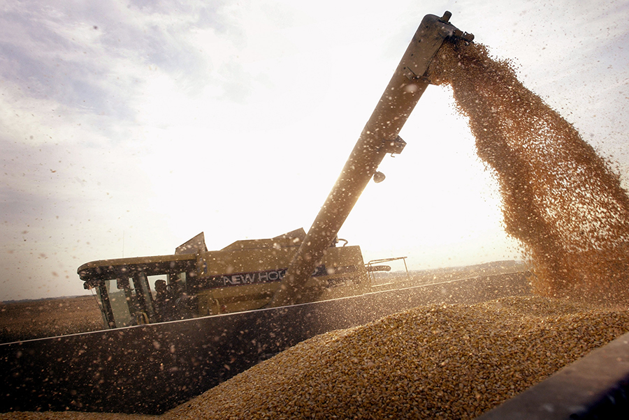 Corn harvest in Illinois. Credit: Scott Olson/Getty Images