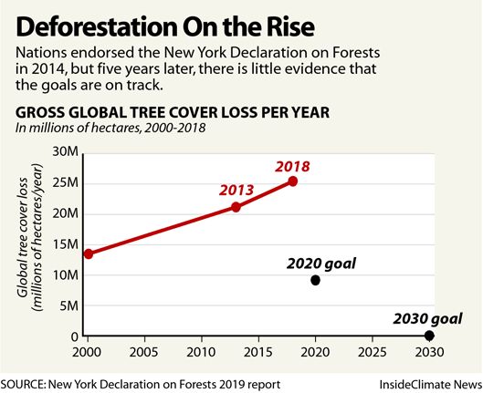 Chart: Deforestation on the Rise