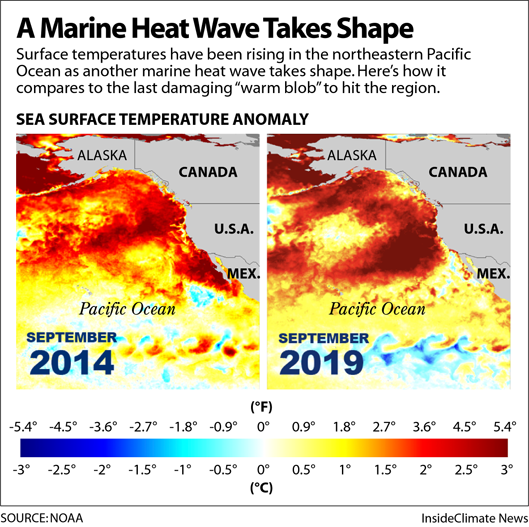 Comparison: A Marine Heat Wave Grows in the Pacific