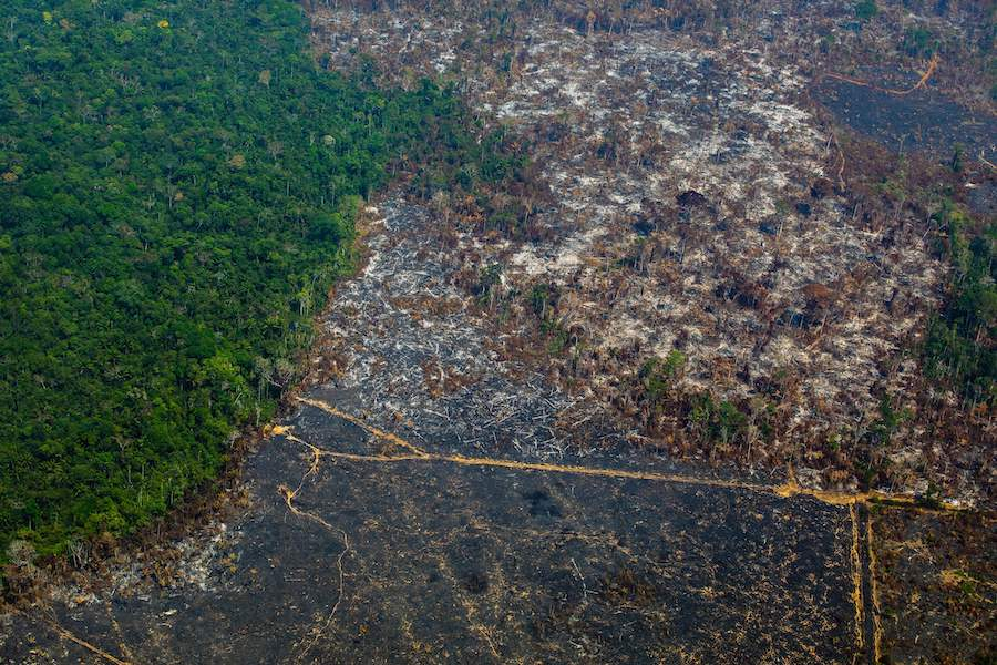 Deforestation by fire in the Amazon. Credit: Joao Laet/AFP/Getty Images