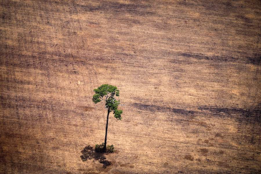Deforestation in the Amazon. Credit: Raphael Alves/AFP/Getty Images
