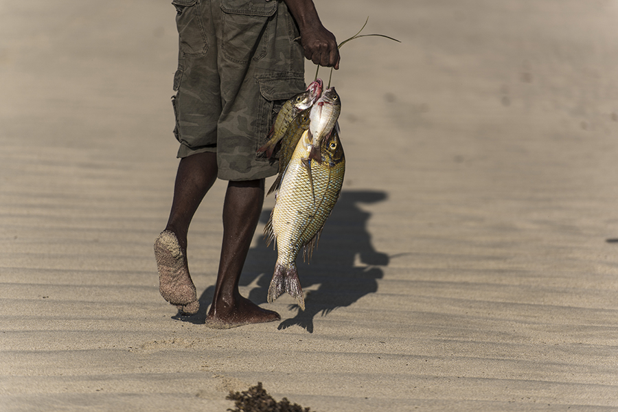 A fisherman with his morning catch on a beach in Kenya. Credit: Derek Hudson/Getty Images