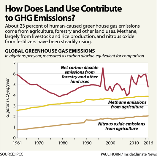 Chart: How Does Land Use Contribute to GHG Emissions?