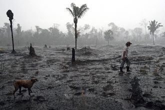 A farmer walks through a recently burned area of Brazilian Amazon rainforest in August 2019. Credit: Carl de Souza/AFP/Getty Images