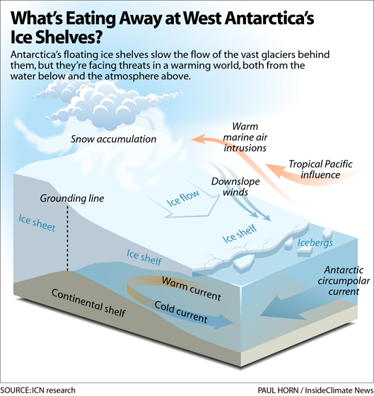 Infographic: What's Eating Away at West Antarctica's Ice Shelves?