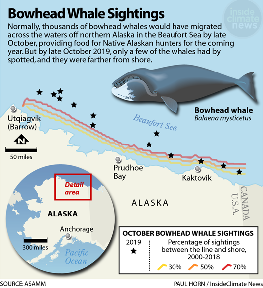 Map: Bowhead Whale Sightings