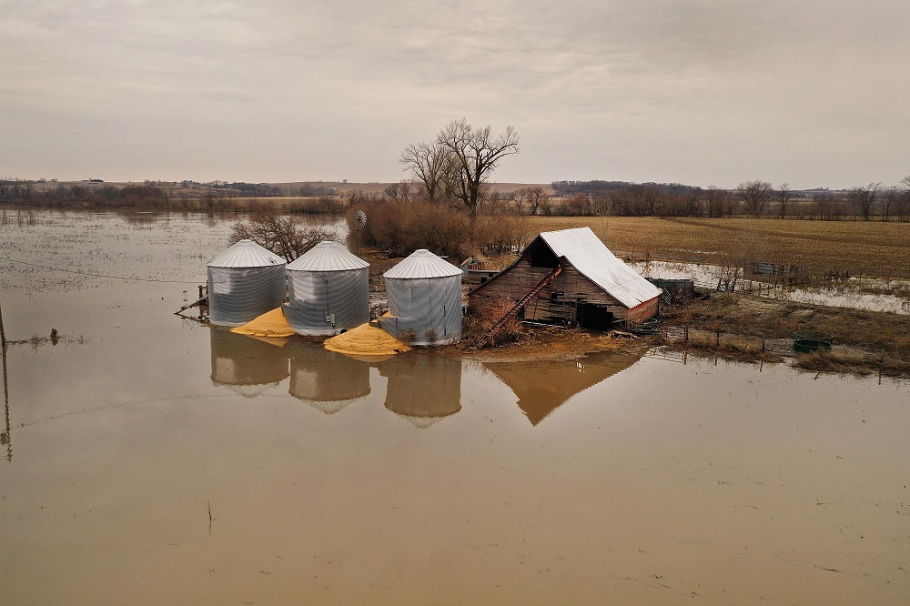 Corn spilled from grain bins soaked with flood water in March 2019 near Union, Nebraska. Credit: Scott Olson/Getty Images