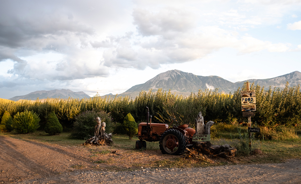 Orchards in the North Fork Valley, Colorado. Credit: Jutta Strohmaier