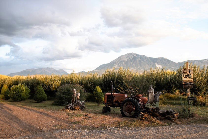 Orchards near Paonia, Colorado. Credit: Jutta Strohmaier