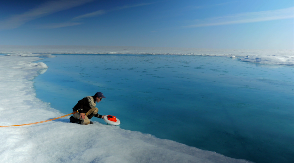 Melting sea ice exposes dark, absorbent waters to solar radiation, which warms the ocean and fuels more melting. Credit: NASA Goddard