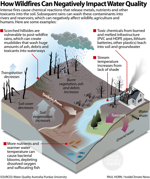 How Wildfires Can Negatively Impact Water Quality