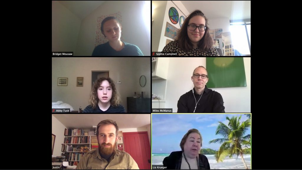 Teenage activists with New York Youth Climate Leaders, an advocacy group, virtually meet with New York Sen. Liz Krueger to talk about divesting the state's pension from fossil fuel holdings.