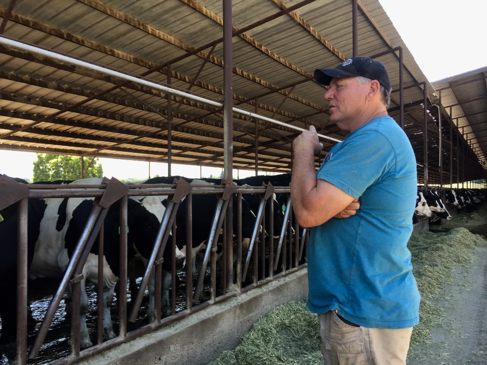 Scott Magneson's California dairy farm has been in his family for generations.