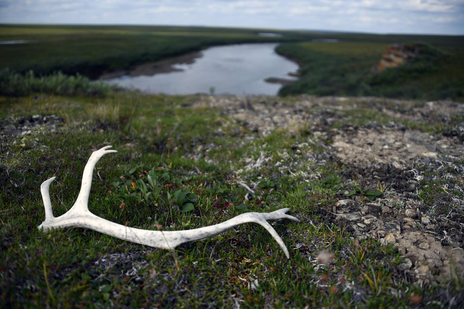 National Petroleum Reserve-Alaska. Credit: National Park Service
