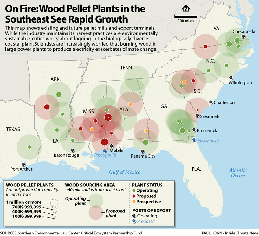 On Fire: Wood Pellets Plants in the Southeast See Rapid Growth