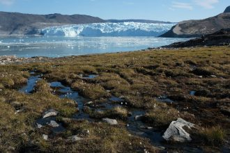 Water from the Greenland ice sheet flows through heather and peat during unseasonably warm weather on Aug. 1, 2019. Credit: Sean Gallup/Getty Images