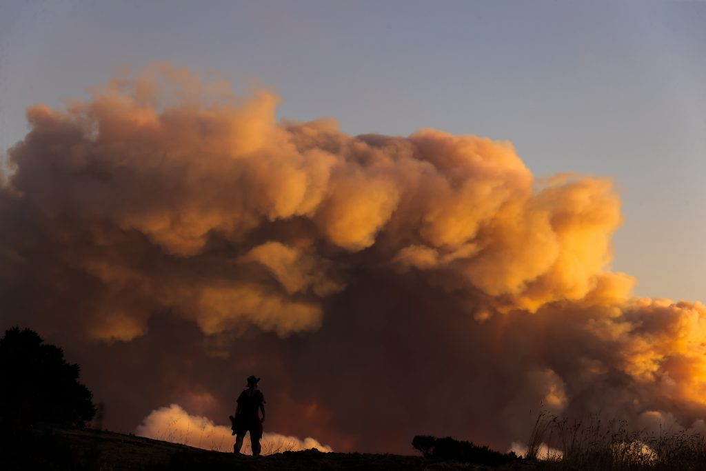 Smoke looms over the Windy Hill Open Space Preserve of San Mateo County on Aug. 19, 2020 at the, showing the dense smoke of wildfires in San Francisco Bay Area. Credit: Dong Xudong/Xinhua via Getty Images