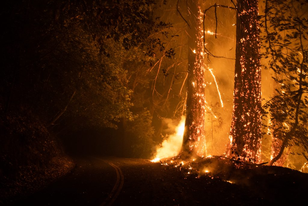 A spot fire from the CZU August Lightning Complex fire burns along Alba Road on the outskirts of Ben Lomond, California, on Aug. 20, 2020. Credit: Dai Sugano/MediaNews Group/The Mercury News via Getty Images