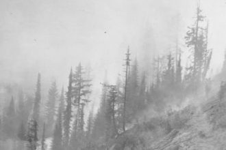 In August 1910, hundreds of wildfires exploded over an area the size of Connecticut in the Bitterroot Mountains of Idaho and Montana. Credit: U.S. Forest Service