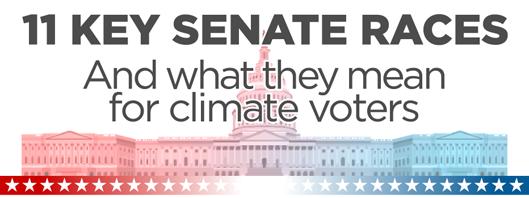 11 Key Senate Races