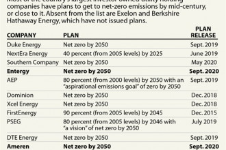 Utilities Aiming for Net Zero