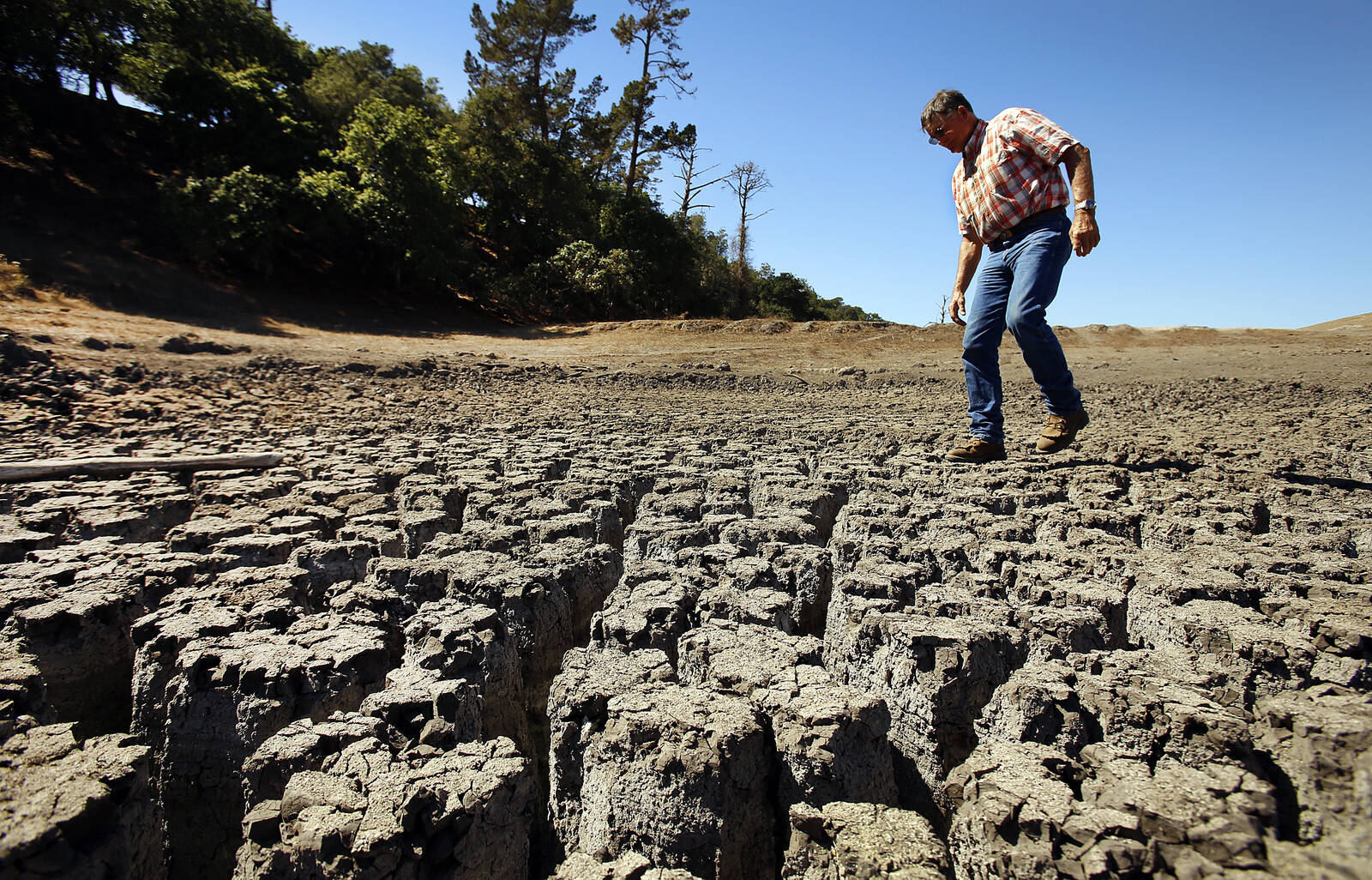 A rancher walks on the cracked remains of a parched lake bed on a ranch along San Simeon Creek in the Santa Lucia Mountain foothills of Cambria that are brown from drought on Oct. 1, 2014. Credit: Al Seib/Los Angeles Times via Getty Images