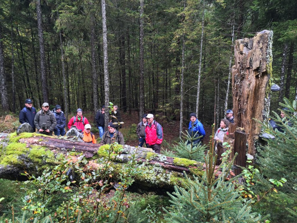 A group of landowners in Austria learn about the climate and ecosystem benefits of gradually allowing some tree plantations to revert back to a natural cycle of forest growth. Restoration of old-growth forests is an important part of global climate mitiga