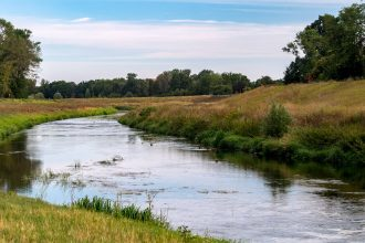 A planned restoration of the forest, meadows and wetlands in this floodplain near Leipzig, Germany, will boost biodiversity by improving wildlife habitat, and bolster climate mitigation by increasing carbon storage. Credit: Hendrik Schmidt/picture allianc