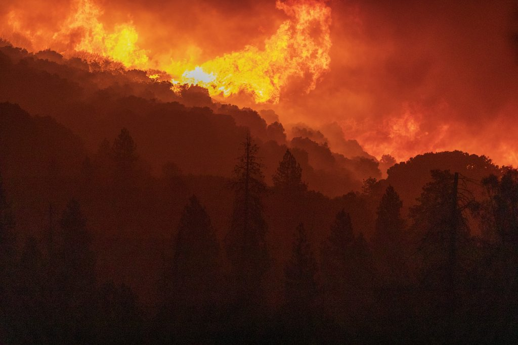 Flames incinerate a forest as the Creek Fire rapidly expands on Sept. 8, 2020 near Shaver Lake, California. Credit: David McNew/Getty Images
