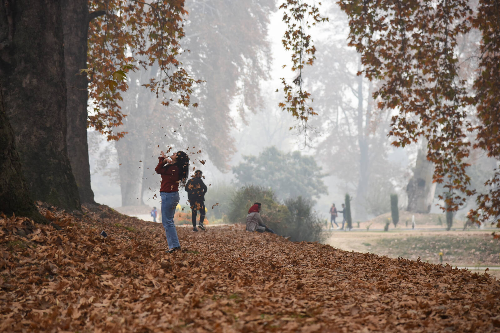Tourists are seen playing with falling maple leaves at a Mughal garden during the autumn season in Kashmire on Nov. 12, 2020.