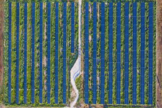 Last year, Clif unveiled a two-megawatt, five-acre solar farm with pollinator-friendly habitat at its bakery in Twin Falls, Idaho. Credit: Jared Lauritsen