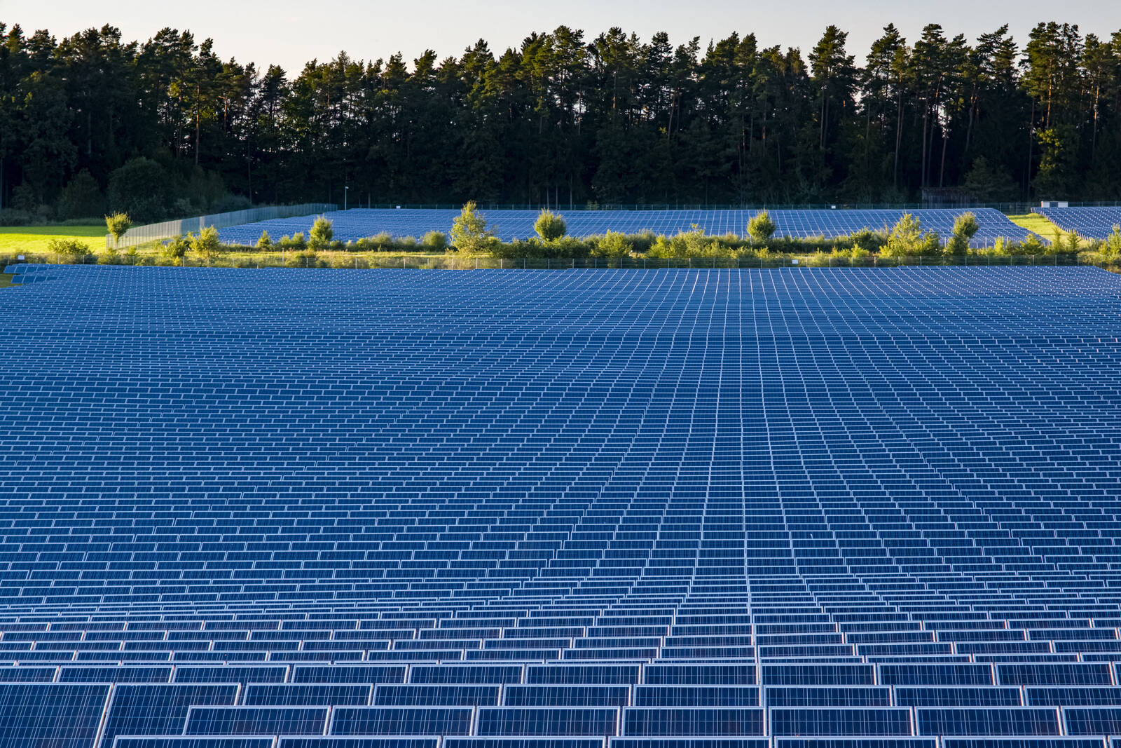 Many Photovoltaik solar panels arranged as part of a solar powerplant. Credit: Frank Bienewald/LightRocket via Getty Images