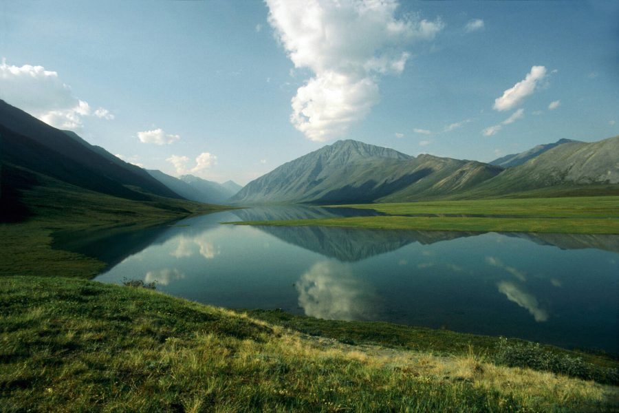 The Trump administration plans to hold an oil leasing sale for the Arctic National Wildlife Refuge in the final days of the Trump presidency. Credit: Universal Education/Universal Images Group via Getty Images