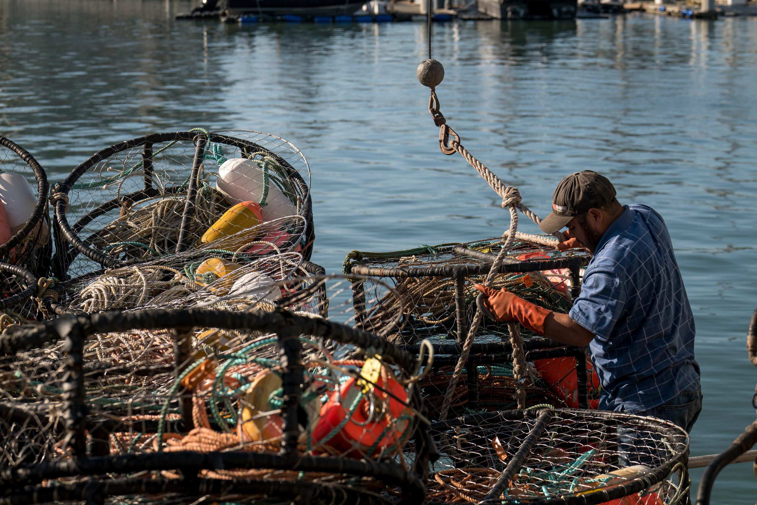 A fisherman hooks up crab pots to be taken off a boat at Pier 45 in San Francisco, California, on Monday, Dec. 23, 2019. Credit: David Paul Morris/Bloomberg via Getty Images