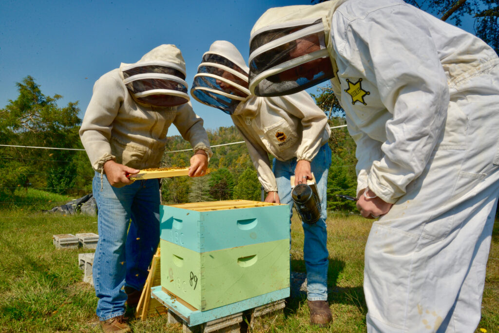 The Appalachian Beekeeping Collective trains locals to raise bees and sells their product online. Photo Courtesy of the Appalachian Beekeeping Collective
