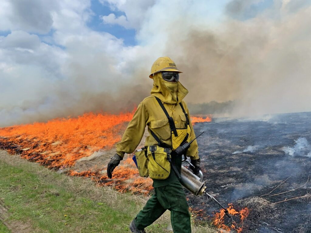A member of Conservation Corps Minnesota & Iowa assists with a prescribed burn at Murphy-Hanrehan Park Reserve in Minnesota in May 2019.